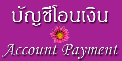 Account Payment